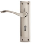 Designer Lever Handles on Backplate